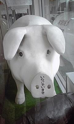 食欲の演出家_豚の顔
