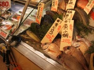 2004_05_01_魚ケース