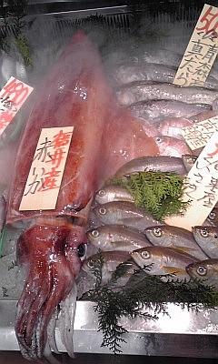 2012_11_17_山助_ソデイカ