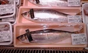 2012_12_12__阪急百貨店_ニシン