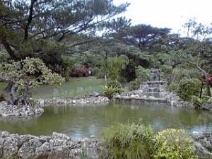 2014_06_30_01_熱帯植物園1.jpg