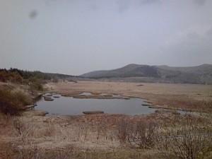 2014_08_17_04_八島ヶ原湿原2.jpg
