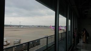 2019_12_15_01_奄美大島1