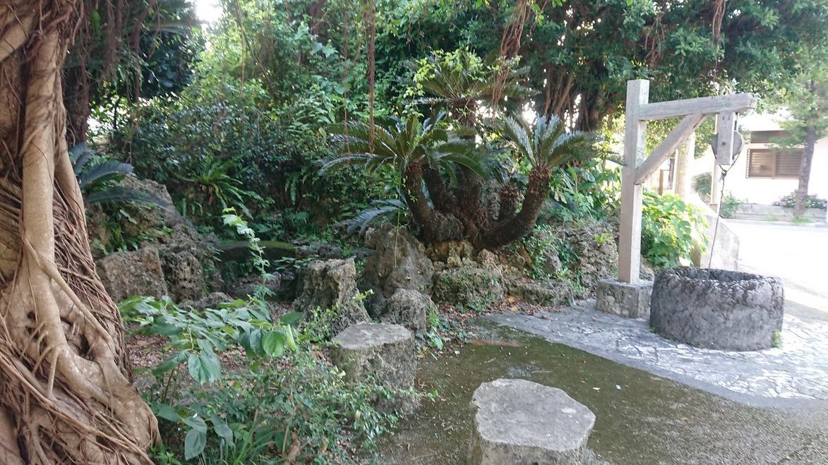 2020_04_11_05_公園.JPG
