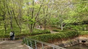 2020_04_23_01_都築中央公園1.JPG