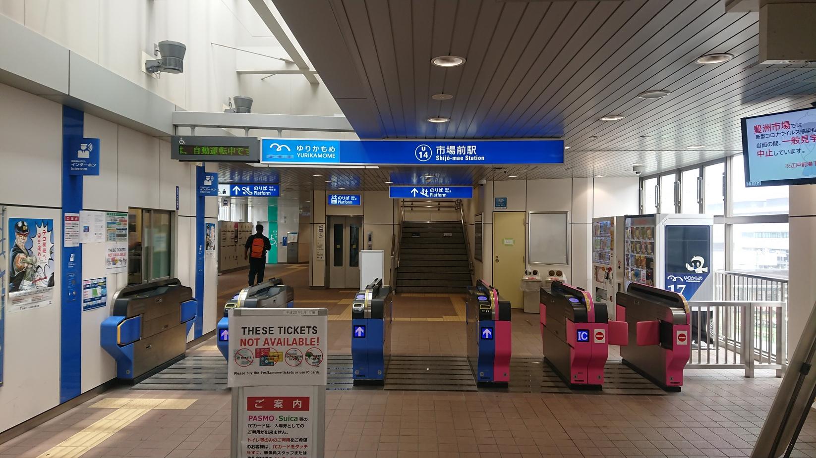 2020_06_07_04_豊洲市場1.JPG