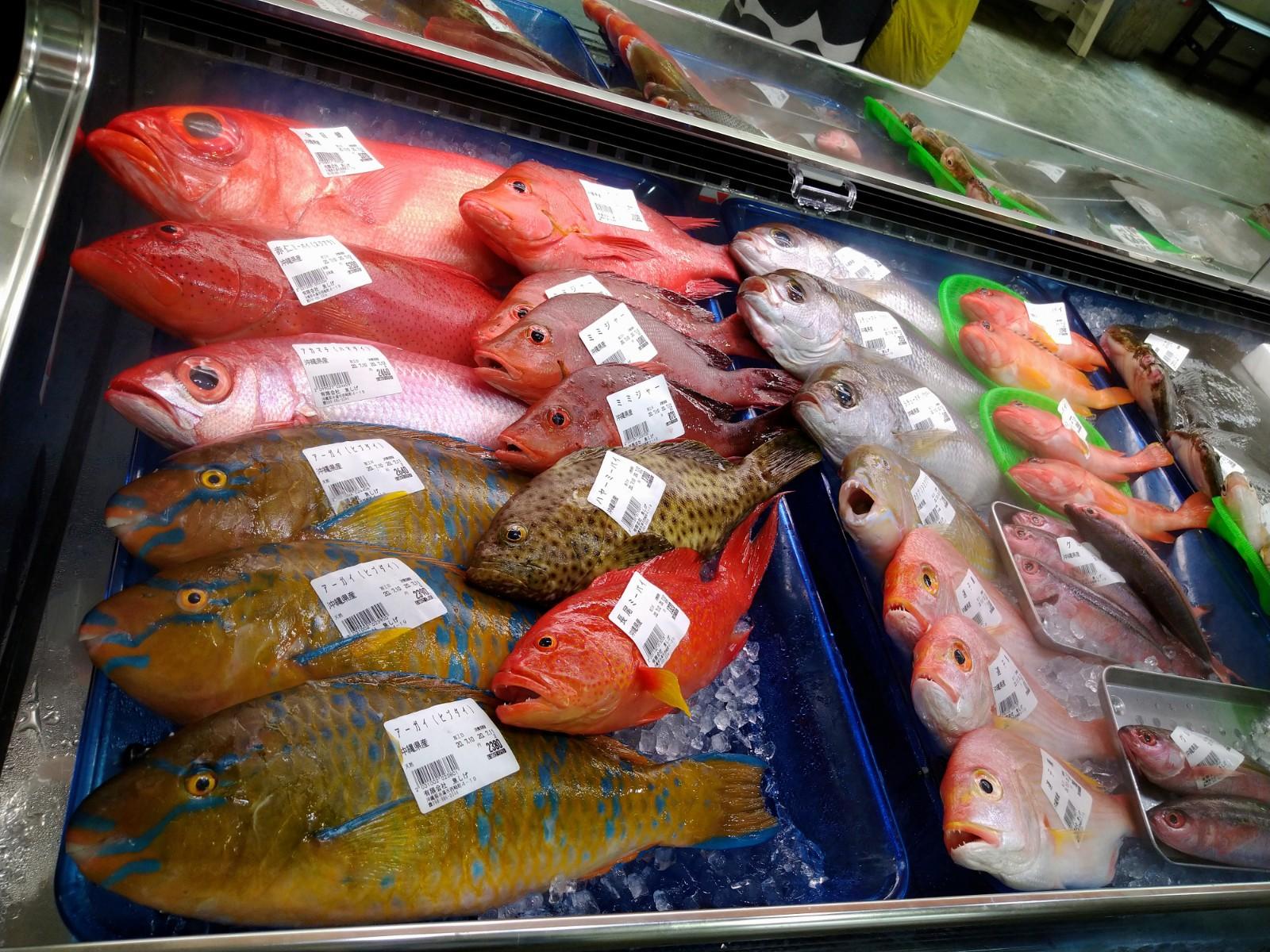 2020_09_06_04_糸満お魚センター1.JPG