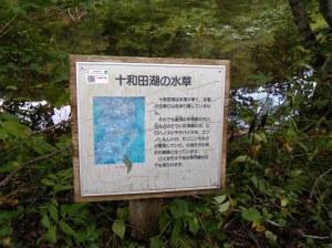 2020_12_03_01_十和田湖2.JPG